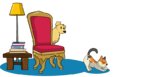 Dog, cat and chair